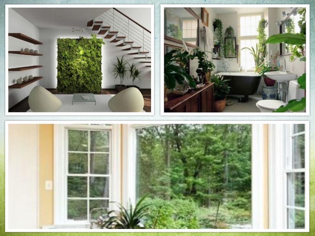 8 Small Indoor Garden Ideas For Fascinating Room Design