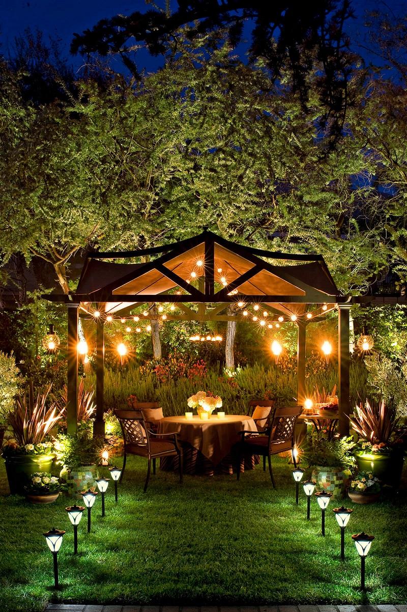 Elegant Well Lit Backyard Dinner