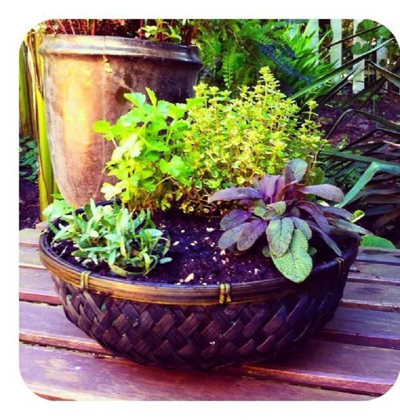 Simple Table Top Garden