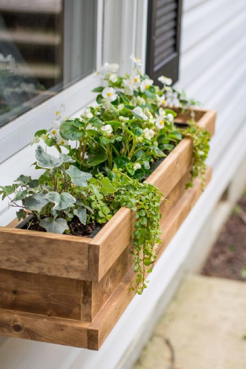 Cedar Window Boxes