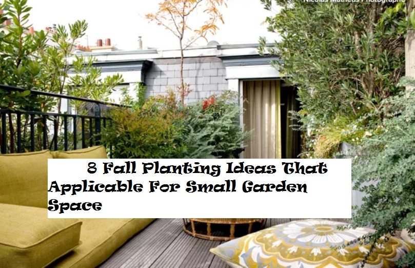 8 Fall Planting Ideas That Applicable For Small Garden Space