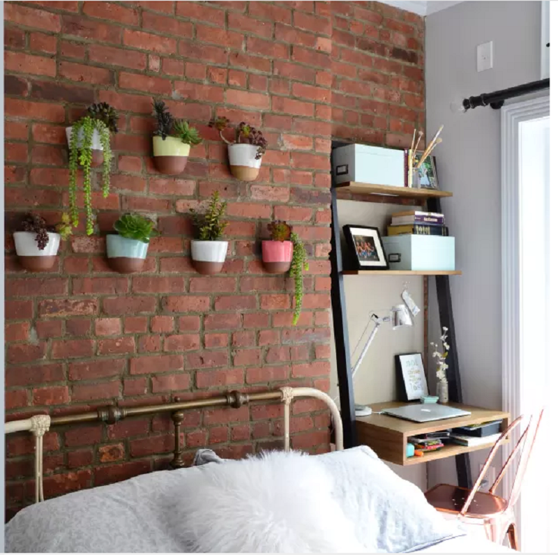 Hang Potted Wall Plants