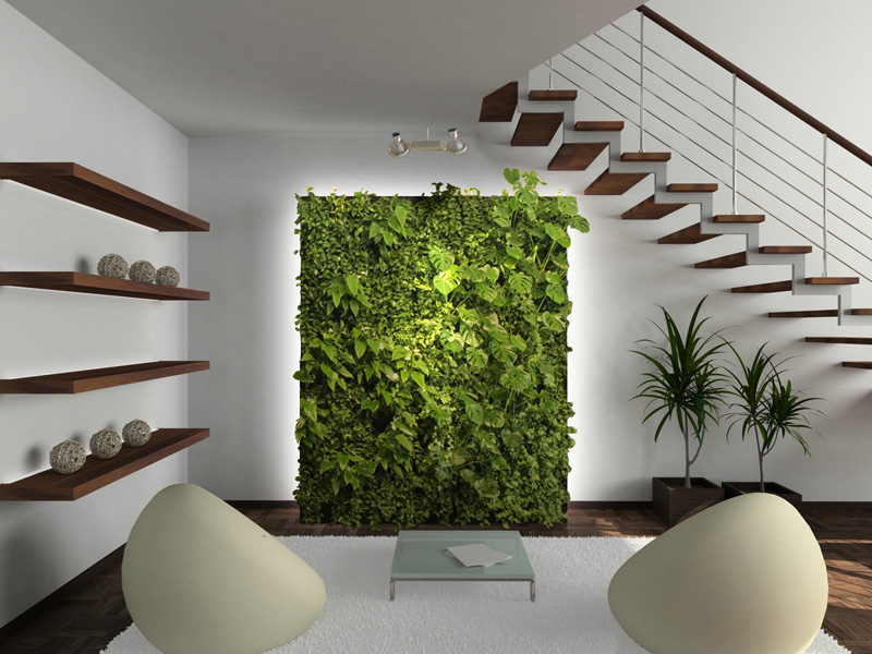Create A Living Wall