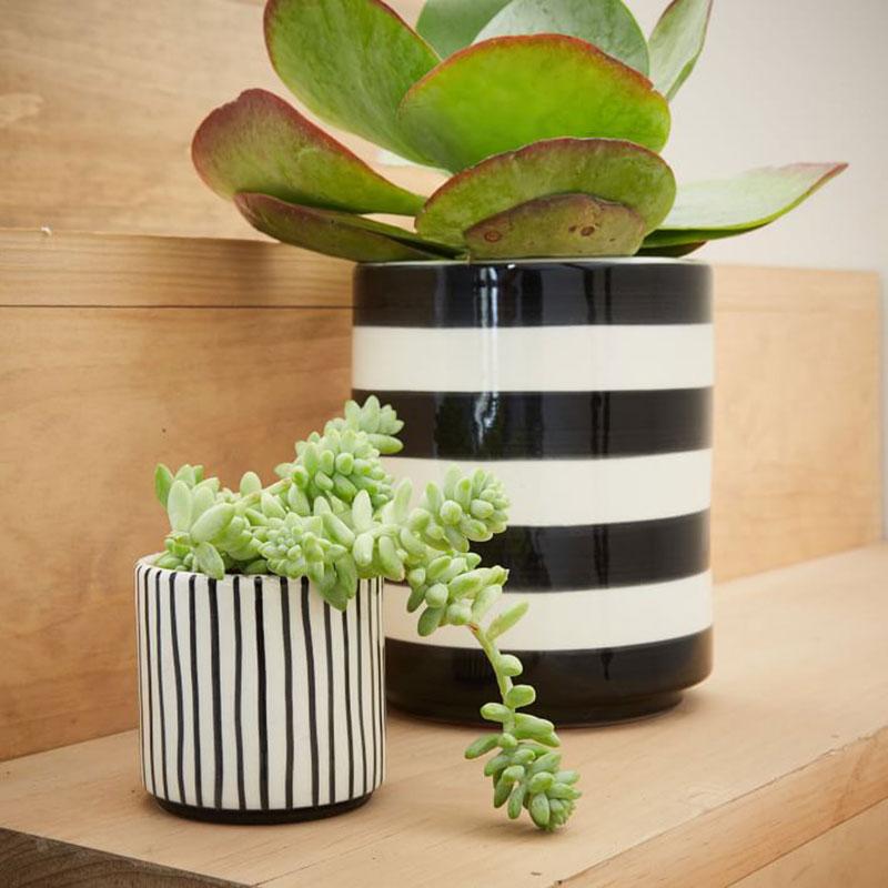 Striped Pots